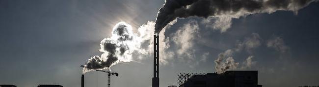 La prochaine pandémie est prévisible, rompons avec le déni de la crise écologique