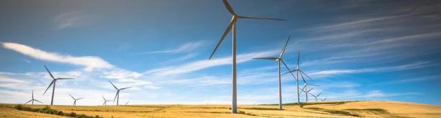 Le gouvernement permet aux préfets de déroger à des normes environnementales